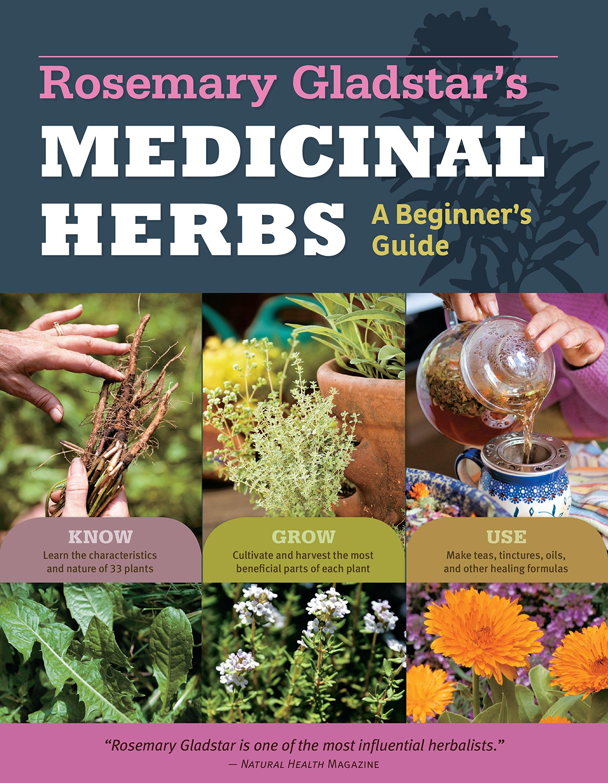 medicinal herbs rosemary