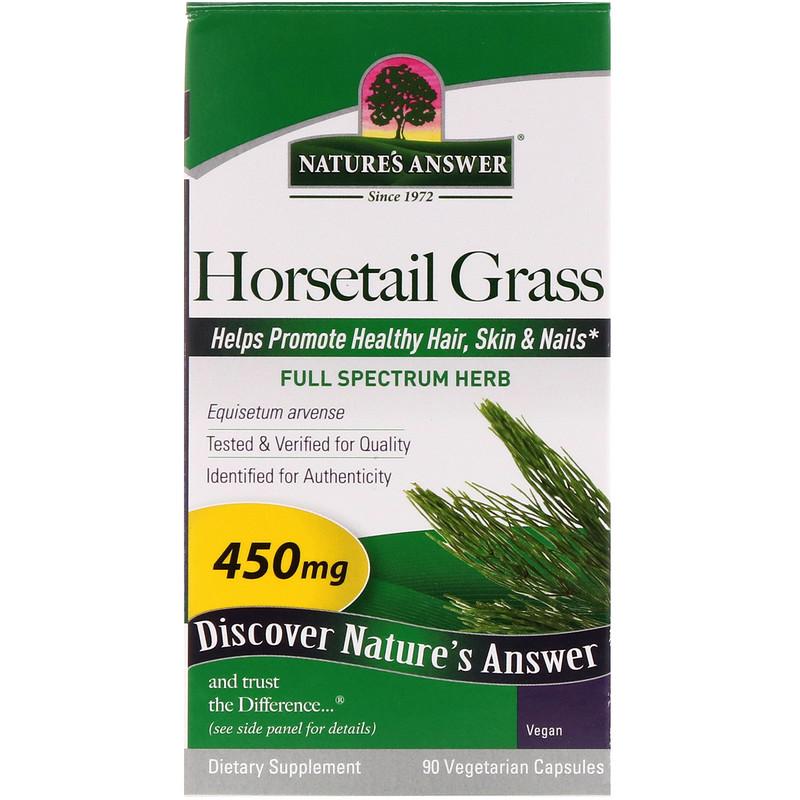 nature-answer-horsetail-grass.jpg